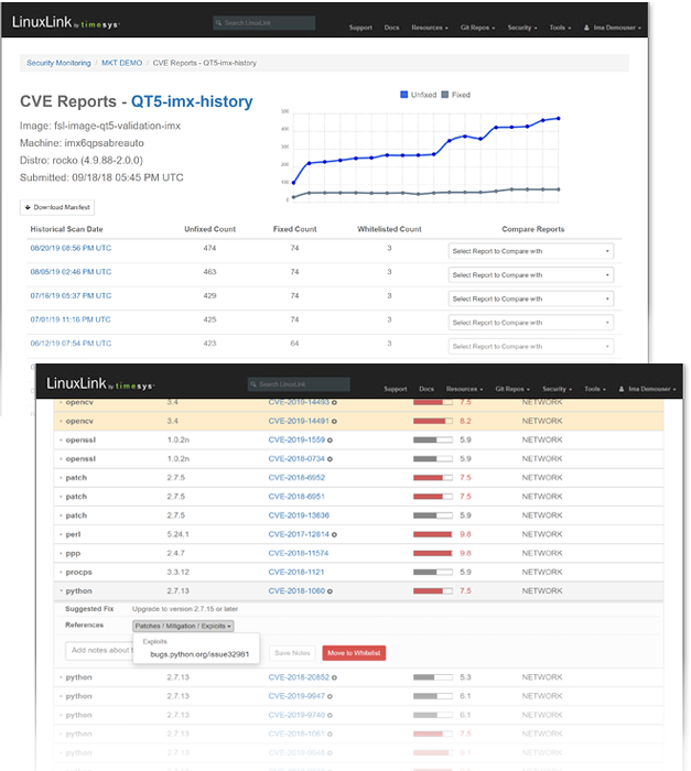 CVE report for managers and detailed risk analysis views